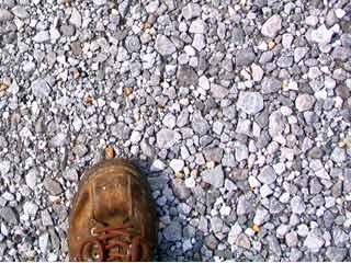 The shoe drops
