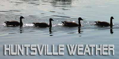 Get your ducks in a row with Huntsville weather